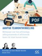 whitepaper aanpak teamontwikkeling