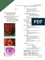 15 - Cardiac and Lipid Profile