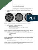 post assess artifact