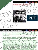 Presentación de Pueblos Chilenos