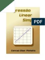 apostila - regressão linear - maio-2012.pdf