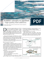 Acidifier concepts in aquafeed – high quality feed additives