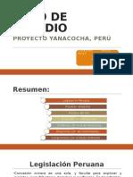 Caso Estudio Peru