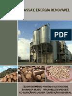Brasil Biomassa e Energia Renovável_e-book