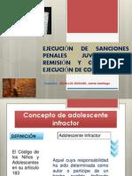 449_17_ejecuciÓn_de_sanciones_penales_juveniles_–_remisiÓn_y_control_de_ejecuciÓn_de_condenas.pdf