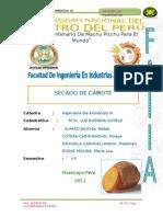 158959550-Trabajo-de-Secado-de-Camote.doc
