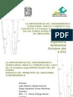 La Importancia Del O.T Para El Fomento Del Cultivo de La Guadua Angustifolia Kunth en Las Zonas Rurales Del Municipio de Anolaima, Cundinamarca