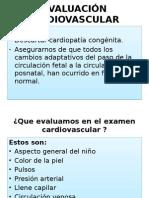 Evaluación Cardiovascular