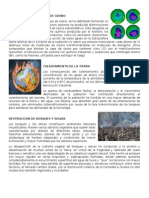 15 Problemas Ambientales