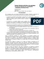 Trituradoras - Pérez Saldaña Braulio Douglas