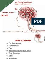 6 3 body senses taste and smell