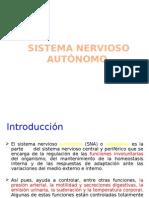 Sn Autonomo[1]
