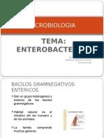 MICROBIOLOGIA Expo Remaisterizada