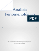 Analisis Fenomenologico
