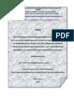 20 Enero-tesis Isppp Mmicroenseñanza Panta Basadre-2015