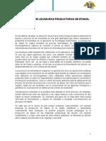 Aislamiento de Levaduras Productoras de Etanol (Pedro)