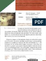 Identificación, biología, y comportamiento de las polillas de la papa en el Ecuador