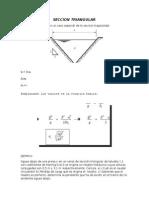 Seccion Triangular
