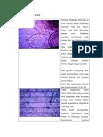 DATA_DAN_ANALISIS.doc;filename= UTF-8''DATA DAN ANALISIS