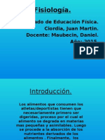 Fisiologia bioquimica JMCiordia.pptx