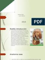 Lesiones Oseas y Meniscales de la rodillla 2da parte.pptx