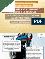 Contaminacion Del Aire Por El Sector Pesquero 2