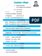 CV hbaich mounir.doc
