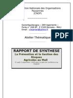Atelier thématique sur la prévention et la gestion des risques agricoles - Rapport de Synthèse (SALL) 2
