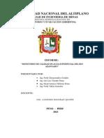 Informe-calidad-Agua Rio Azangaro Final Mijail
