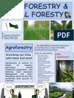 Agro Forestry and social Forestry..ajmal Bhai -nov 2015.pdf