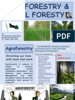 Agro Forestry and social Forestry..ajmal Bhai -nov 2015.pdf