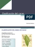 Clasificación Del Cacao Marcelina Mendoza - Scrib