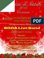 800A 2015 Mercatini di Natale