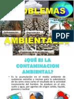 13.- Problemas Ambientales