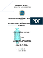 Practica de Concentracion de Minerales i