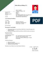 contoh cv yang baik dan benar pdf
