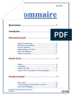 Rapport PFE route