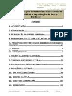 Aula 00 - Princípios Constitucionais Relativos Aos Direitos Políticos e Organização Da Justiça Eleitoral