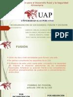 FUSION D.E