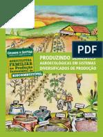 Produzindo sementes agroecologicas