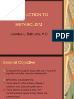 INTRODUCTION TO METABOLISM (2).ppt