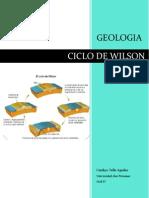 Informe CICLO de WILSON - C
