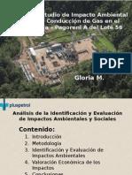 Análisis Del Estudio de Impacto Ambiental Gasoducto