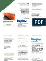 211254899 Leaflet Dermatitis