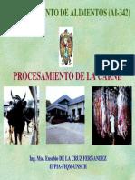PROCESAMIENTO DE LA CARNE.pdf