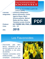 Flavonoides Citrus Limon Power Point [Autoguardado]