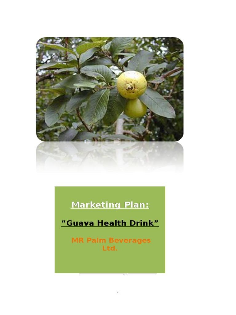 Marketing Plan of Guava Health Drink   Marketing   Market