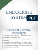 Endocrine System Report