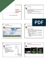 Falcao spda_para_raios.pdf