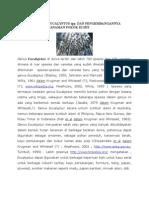 Deskripsi Umum Eucalyptus Spp